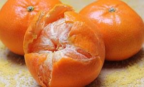tangerines-1721545__180
